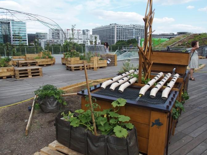 Gros plan sur trois acteurs franciliens de l'agriculture urbaine